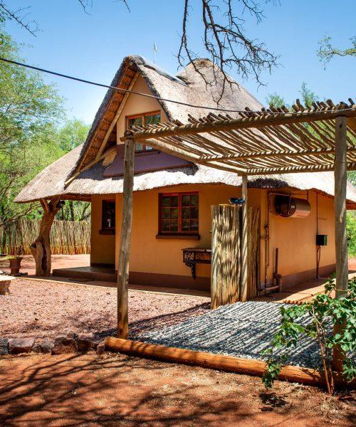 Angasii Game Lodge: The Warthog